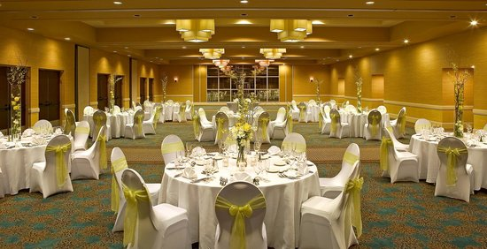 Sheraton Fort Lauderdale Airport & Cruise Port: Empire Grande Ballroom
