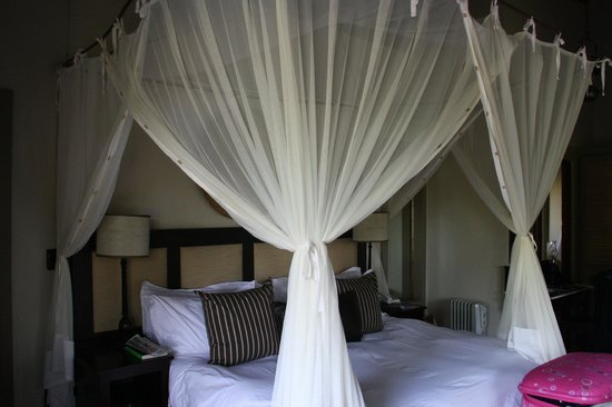 Jock Safari Lodge : Our Room