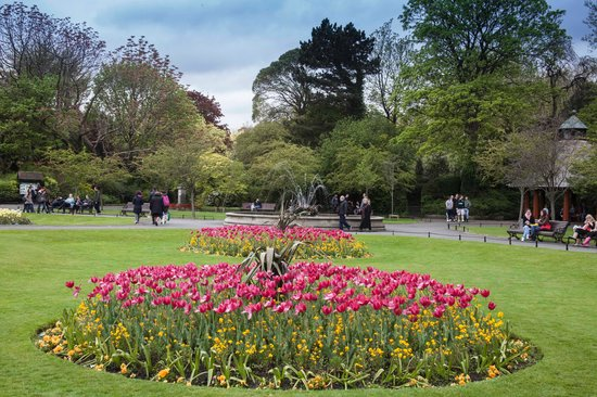 Fitzwilliam Hotel Dublin: St. Stephen's Green (park) is across the street from the Fitzwilliam hotel