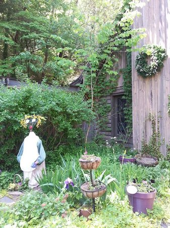 Wild Plum Tea Room: Outside Garden