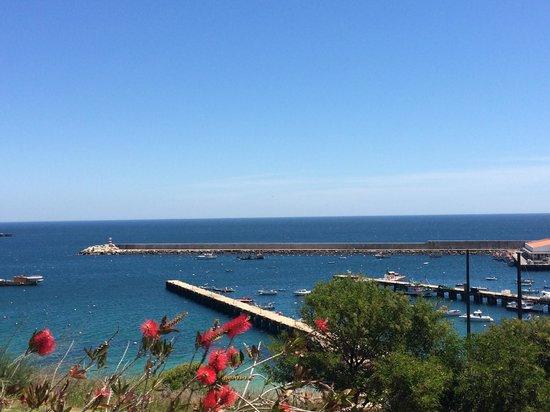 Memmo Baleeira Hotel : Vue du jardin