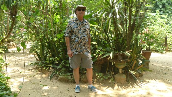 Carambola Botanical Gardens & Trails: Nice and cool here