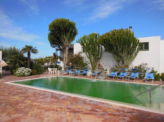 Hotel Imperamare : Pool Bereich