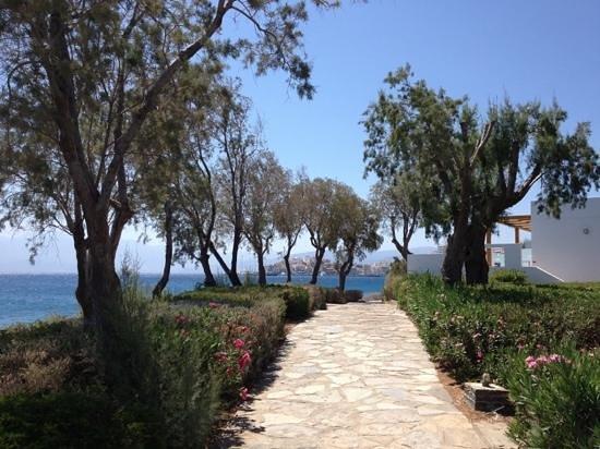 Minos Beach art hotel: Minos beach art hotêl