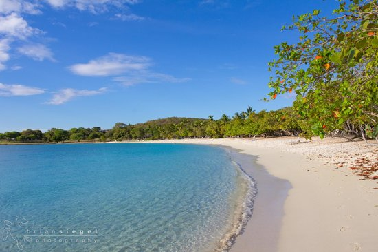 Caneel Bay Resort: Scott Beach
