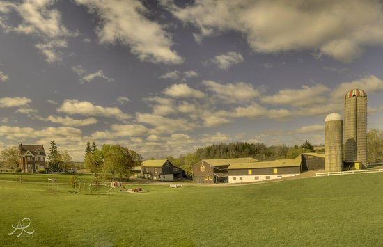 Dyment's Farm (Photo by Aerial Promotions)