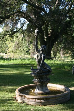 Orchard Hill Farm Bed & Breakfast: Mermaid Fountain