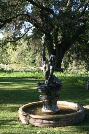 Orchard Hill Farm Bed & Breakfast : Mermaid Fountain