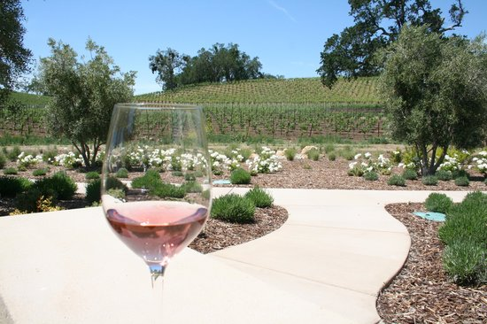Orchard Hill Farm Bed & Breakfast: Dry Rose at Justin Vineyards