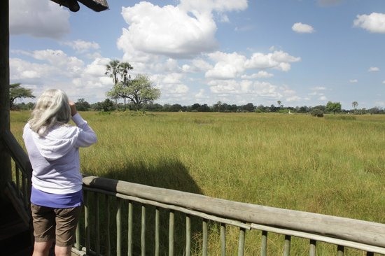 Moremi Crossing Camp : view from lodge