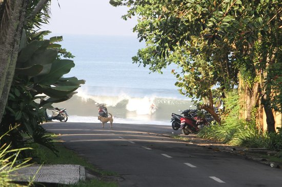 Andy's Surf Villa and Bungalows: View of the surf down the end of the road