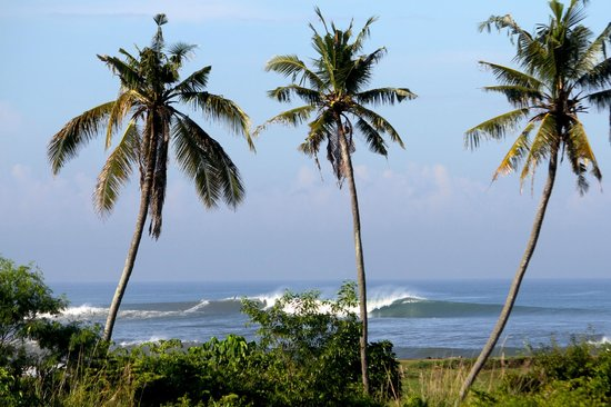 Andy's Surf Villa and Bungalows: Great place to check the surf from