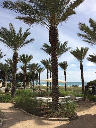 Grand Beach Hotel Surfside : jardins