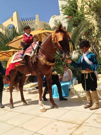 Eden Star Zarzis : Tunisian stunt horse and riders