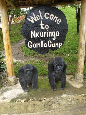Nkuringo Bwindi Gorilla Lodge: The camp is so convenient to the gorillas.