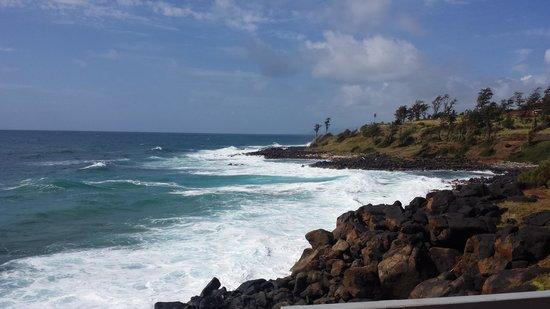 Coconut Coasters Beach Bike Rentals : great coast line