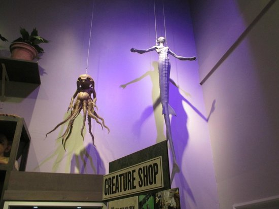 Warner Bros. Studio Tour London - The Making of Harry Potter: Mandrake and Merman