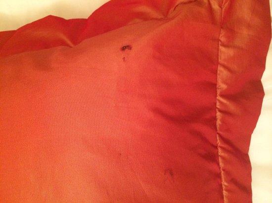 Impala Hotel: buchi (o bruciature) sui cuscini della camera