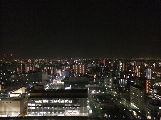 Japanese Cuisine Naniwa: View from the top