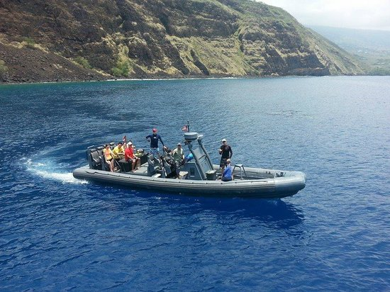 Wild Hawaii Ocean Adventures
