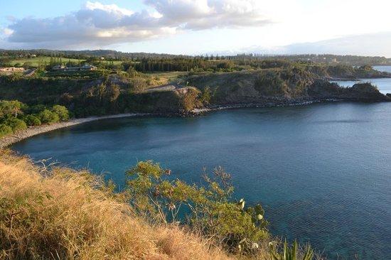Honolua Bay: Vista da baia