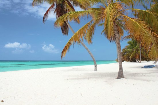 Bayahibe, Dominican Republic: Spiaggia e mare al Canto de la Playa