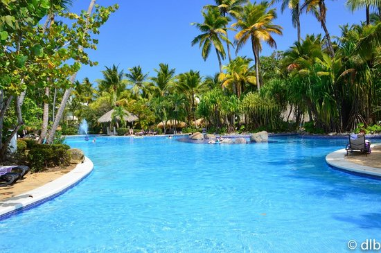 Paradisus Punta Cana Resort: wonderful pool