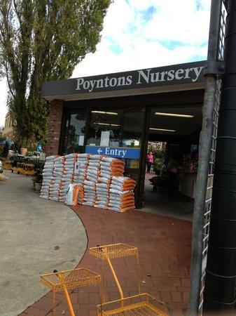 Poynton's Boulevard Cafe: Poyntons Nursery & Cafe