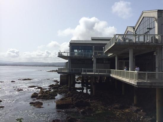 Monterey Bay Aquarium: Great building in spectatular location