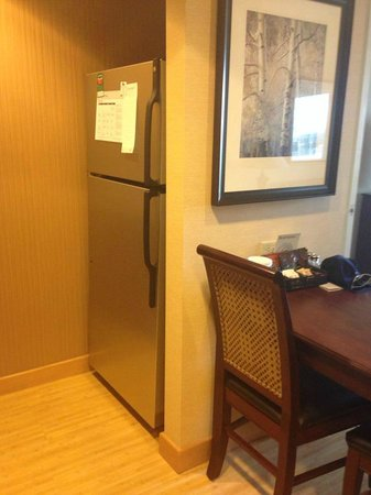 Homewood Suites by Hilton Toronto Airport Corporate Centre: Full-sized fridge with freezer!