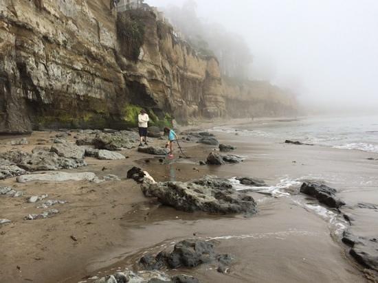 New Brighton State Beach: stunning