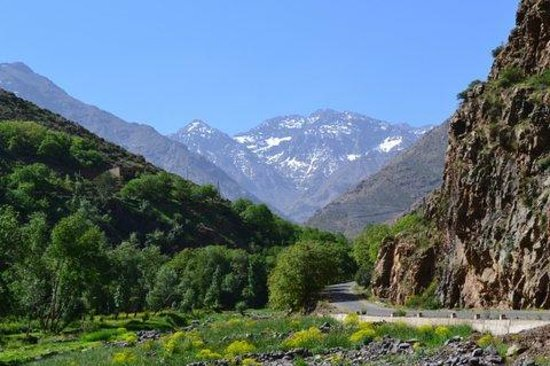 Atlas and Sahara Tours : views of Atlas mountains
