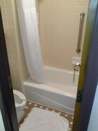 Drury Inn Mobile: Smallest bathroom