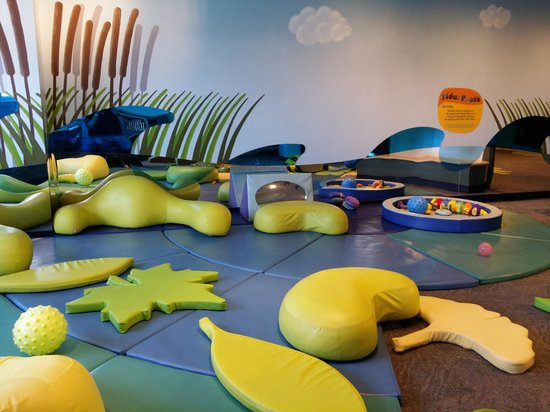 Port Discovery Children's Museum: Tidal Pools