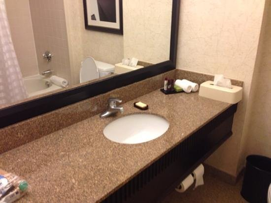 Embassy Suites by Hilton Chicago Downtown: bathroom