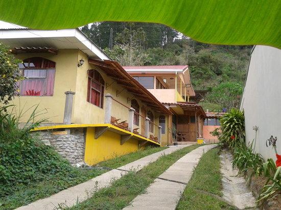 Apartamentos El Pino