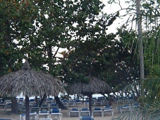 Grand Bahia Principe El Portillo : view from our room!