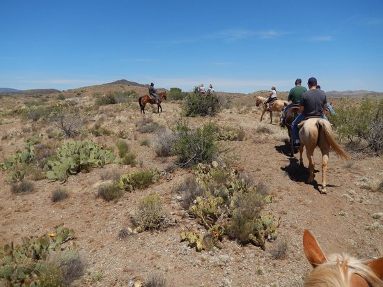 Pot A Gold Stables : Great horseback experience!