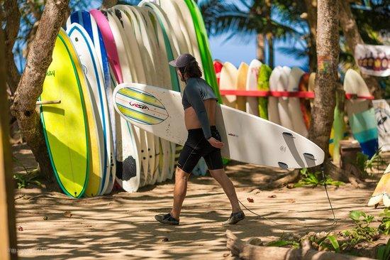 PauHana Surf School: boards
