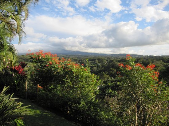 Maui Tradewinds: View from the lanai