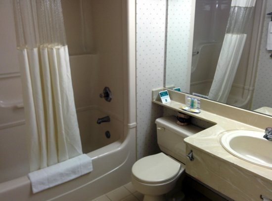 Quality Hotel & Suites Airport East: Bathroom