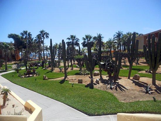 jardines posada real los cabos
