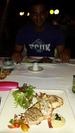 Sardine: exquisite seafood meal