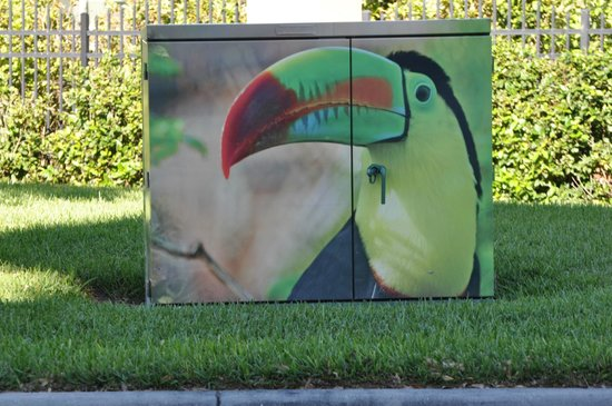 Floridays Resort : Like how all the utility boxes were covered in murales