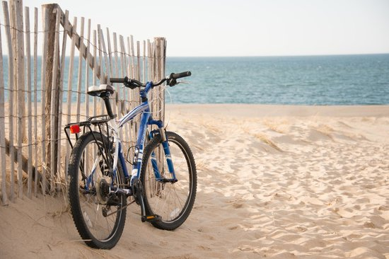 8 Dyer Hotel: We have complimentary bikes for guest use