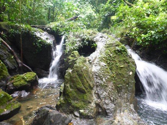 Ecolodge Nautilos: Double waterfall