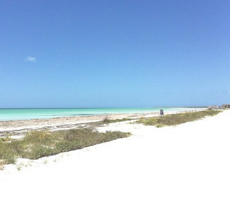 Hotel Villas Delfines: Nuestra vista a la llegada al hotel... ¡el paraíso!