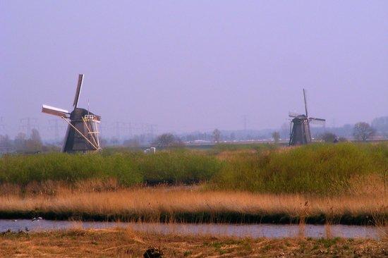 Réseau de moulins de Kinderdijk-Elshout : Walking into Kinderdijk