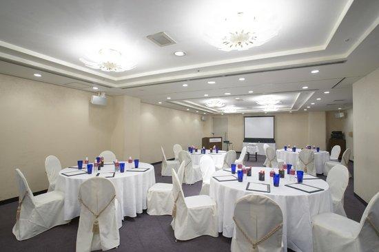 ANA Crowne Plaza Okinawa Harborview: Meeting Room