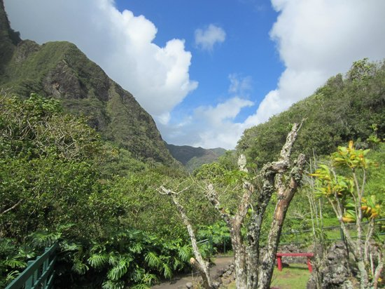 Iao Valley State Monument: View of the Iao Valley